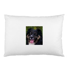 Australian Shepherd Black Tri Pillow Cases