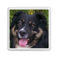Australian Shepherd Black Tri Memory Card Reader (Square)