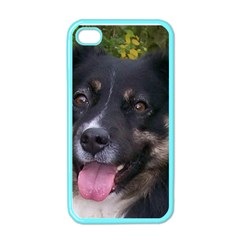 Australian Shepherd Black Tri Apple iPhone 4 Case (Color)