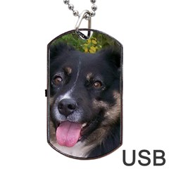 Australian Shepherd Black Tri Dog Tag USB Flash (Two Sides)