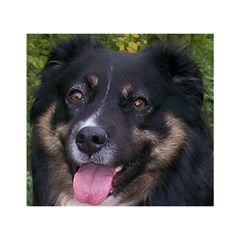 Australian Shepherd Black Tri Birthday Cake 3D Greeting Card (7x5)