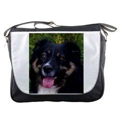Australian Shepherd Black Tri Messenger Bags