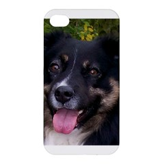 Australian Shepherd Black Tri Apple iPhone 4/4S Premium Hardshell Case