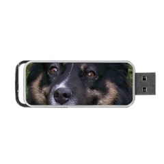Australian Shepherd Black Tri Portable USB Flash (Two Sides)