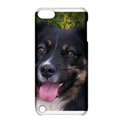 Australian Shepherd Black Tri Apple iPod Touch 5 Hardshell Case with Stand