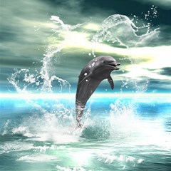 Funny Dolphin Jumping By A Heart Made Of Water Magic Photo Cubes