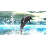 Funny Dolphin Jumping By A Heart Made Of Water Best Friends 3D Greeting Card (8x4)  Back