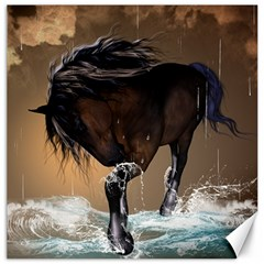 Beautiful Horse With Water Splash Canvas 16  x 16