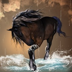 Beautiful Horse With Water Splash Magic Photo Cubes
