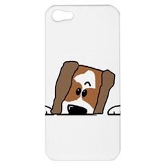 Peeping Shih Tzu Apple iPhone 5 Hardshell Case