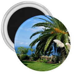 Sunny Tenerife 3  Magnets
