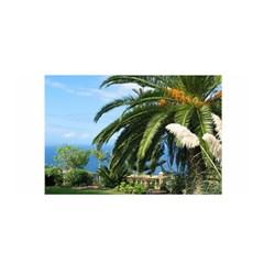 Sunny Tenerife Satin Wrap