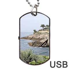 Tenerife,painted Version Dog Tag Usb Flash (one Side)