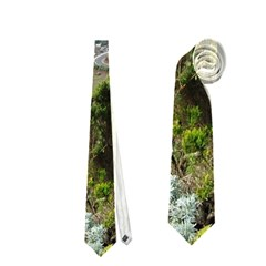 Tenerife 10 Neckties (two Side)