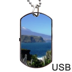 Panted Landscape Tenerife Dog Tag USB Flash (Two Sides)