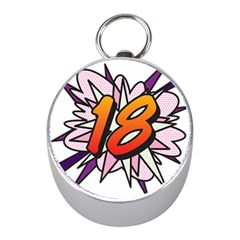 Comic Book 18 Pink Mini Silver Compasses