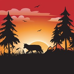 The Lonely Wolf In The Sunset Magic Photo Cubes