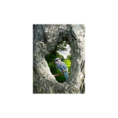 Bird In The Tree 2 Shower Curtain 48  x 72  (Small)