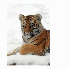 Tiger 2015 0101 Small Garden Flag (Two Sides)