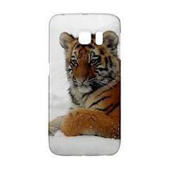 Tiger 2015 0101 Galaxy S6 Edge