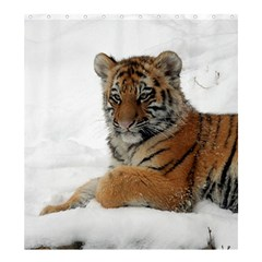 Tiger 2015 0101 Shower Curtain 66  x 72  (Large)