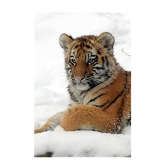 Tiger 2015 0101 Shower Curtain 48  x 72  (Small)