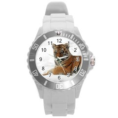 Tiger 2015 0101 Round Plastic Sport Watch (L)