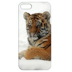 Tiger 2015 0101 Apple iPhone 5 Hardshell Case with Stand