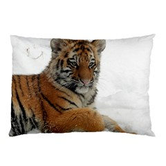 Tiger 2015 0102 Pillow Cases