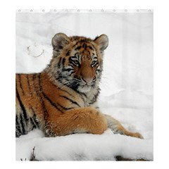 Tiger 2015 0102 Shower Curtain 66  x 72  (Large)
