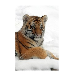 Tiger 2015 0102 Shower Curtain 48  x 72  (Small)
