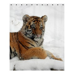 Tiger 2015 0102 Shower Curtain 60  X 72  (medium)