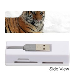 Tiger 2015 0102 Memory Card Reader (stick)