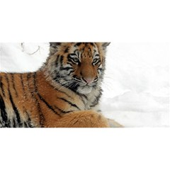 Tiger 2015 0102 YOU ARE INVITED 3D Greeting Card (8x4)