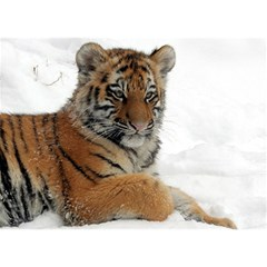 Tiger 2015 0102 Birthday Cake 3D Greeting Card (7x5)