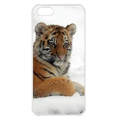 Tiger 2015 0102 Apple iPhone 5 Seamless Case (White)