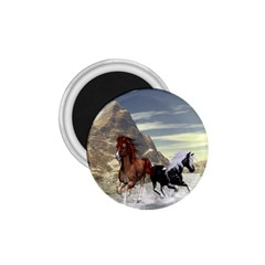 Beautiful Horses Running In A River 1.75  Magnets