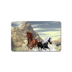 Beautiful Horses Running In A River Magnet (Name Card)
