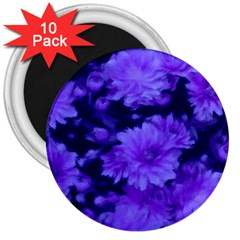 Phenomenal Blossoms Blue 3  Magnets (10 pack)