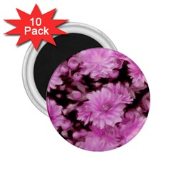 Phenomenal Blossoms Pink 2 25  Magnets (10 Pack)