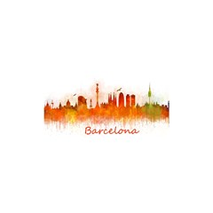 Barcelona City Art Shower Curtain 48  x 72  (Small)