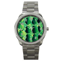 Apples Pears And Limes  Sport Metal Watches
