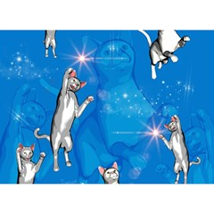 Funny, Cute Playing Cats With Stras Birthday Cake 3d Greeting Card (7x5)