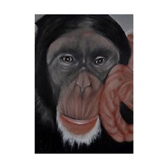 The Thinker Shower Curtain 48  x 72  (Small)