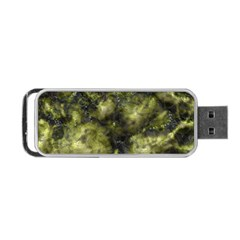 Alien DNA green Portable USB Flash (Two Sides)