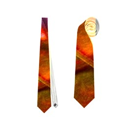 Imposant Abstract Red Neckties (One Side)