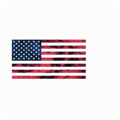 Usa5 Large Garden Flag (two Sides)