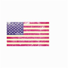Usa99 Small Garden Flag (Two Sides)