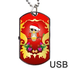 Funny, Cute Christmas Owl  With Christmas Hat Dog Tag USB Flash (Two Sides)