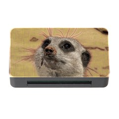 Meerkat 2 Memory Card Reader With Cf